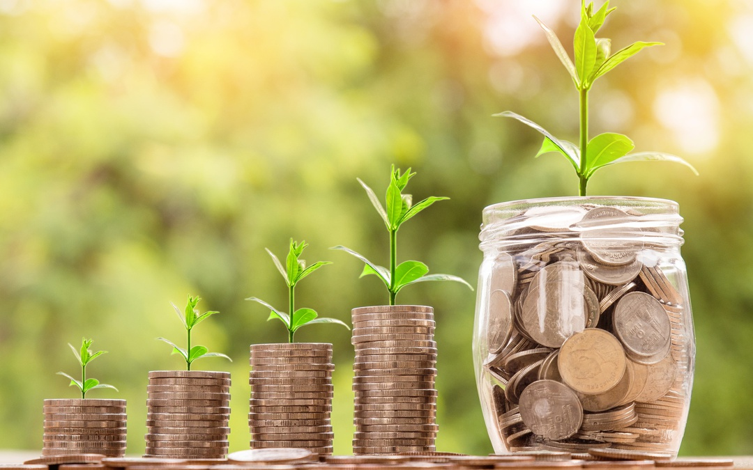 Codigo Fiscal do Investimento – Poupança para investir